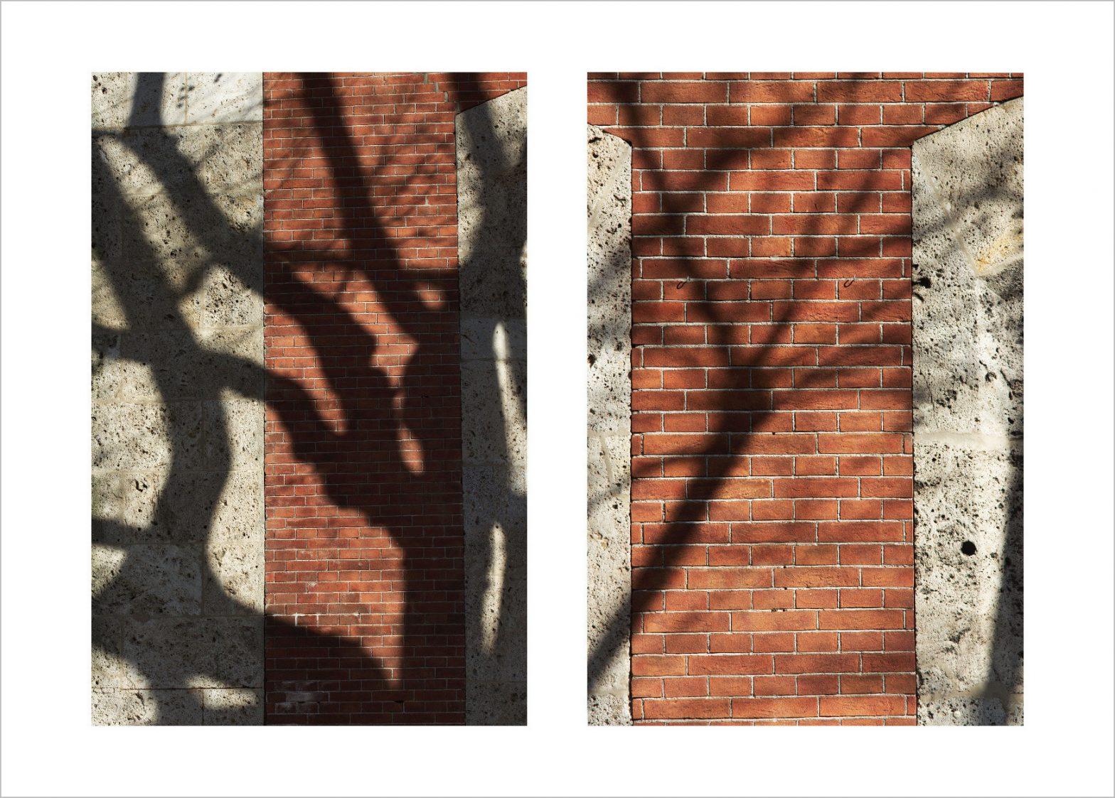 Trees Shadows on Old Saline Building, Bad Reichenhall