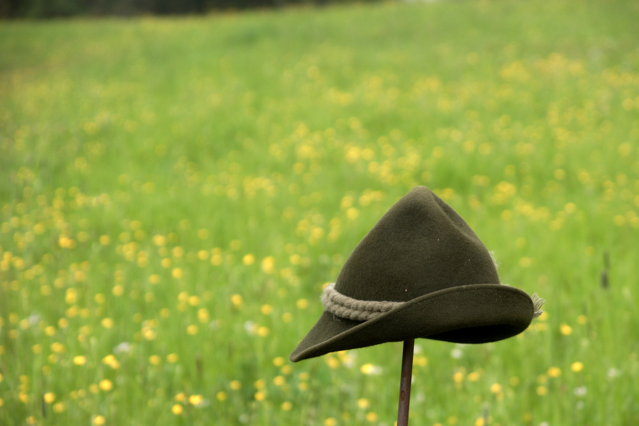 Hat and Meadows