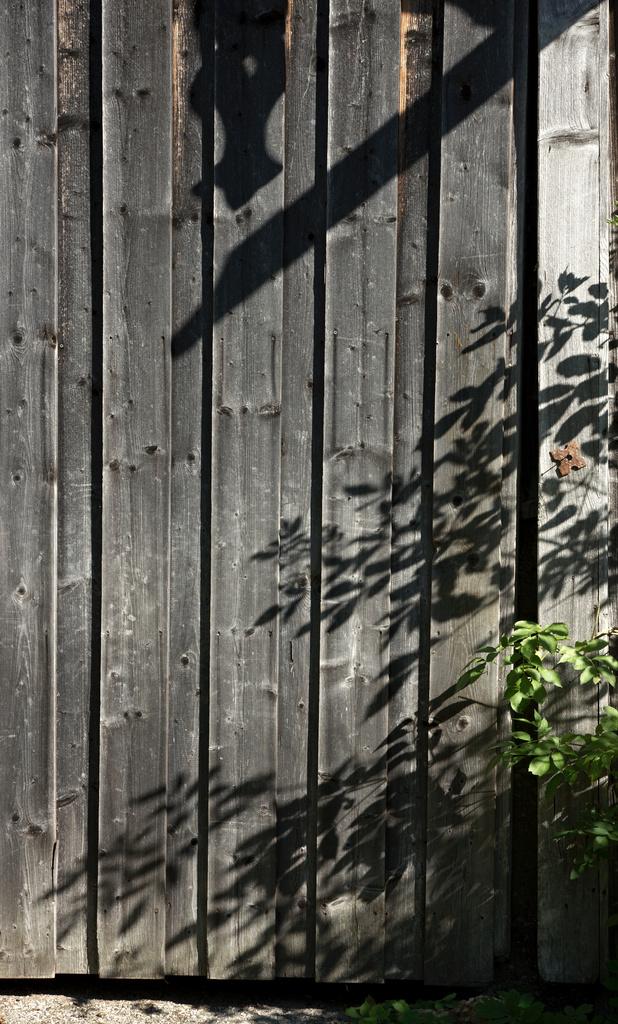 Click to enlarge: Barn Door Shadows