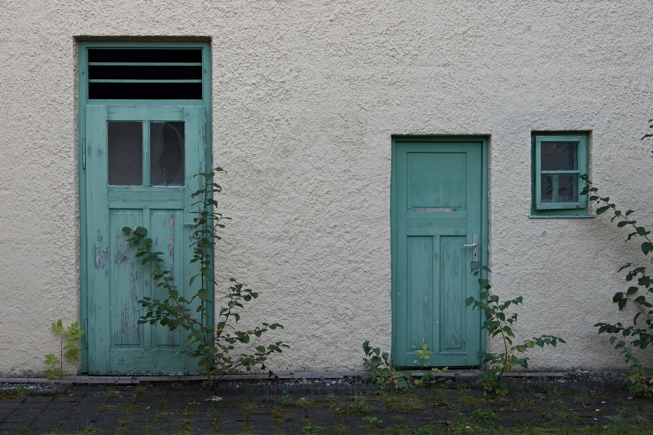 Click to enlarge: Door, Wicket, Window