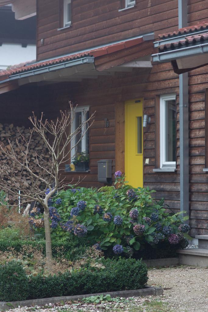Click to enlarge: Yellow Door