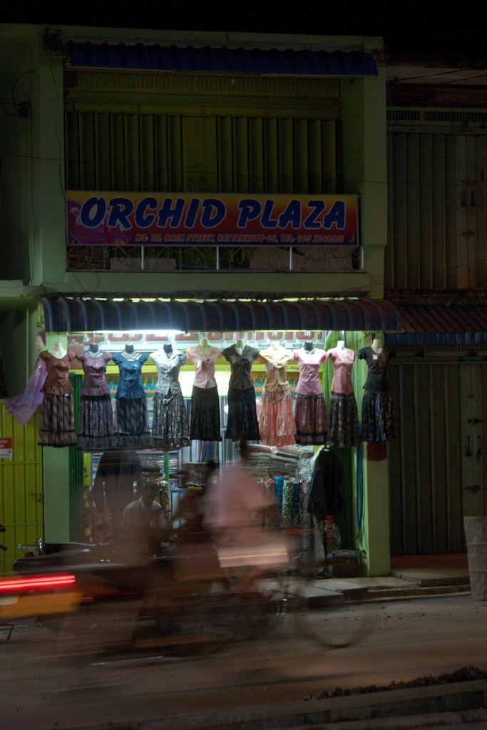 Click to enlarge: Orchid Plaza [f/4.5, 1/15 sec, 50mm-e, ISO 800, Sony A700]