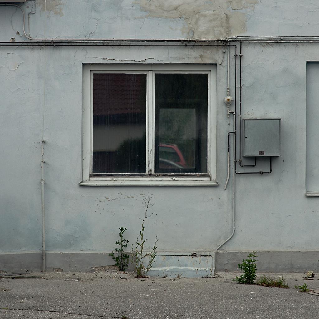 Windows, Weeds 1