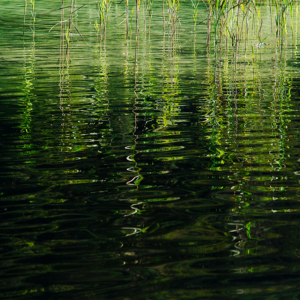 Thumsee Ripples