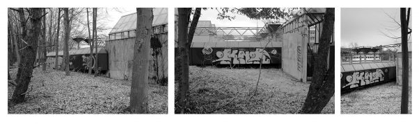 Graffiti in the Forest, Near Olympiapark, Munich