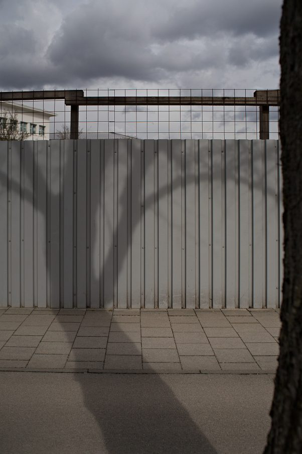 Tree on Fence, Dachauer Str., Munich