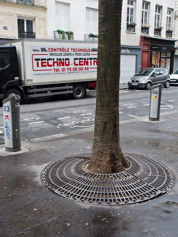 Old and new Tech, Marais, Paris, Urban, City Tree