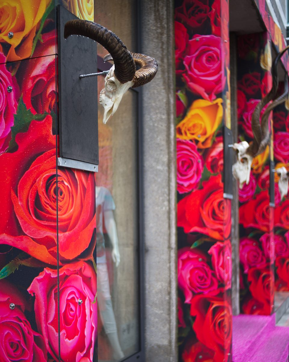 The Rose is a Symbol of Death, Altheimer Eck, Munich, Advertisements, Memento Mori, Pentax-M 2.8/40mm, Shop Windows, Urban, geotagged
