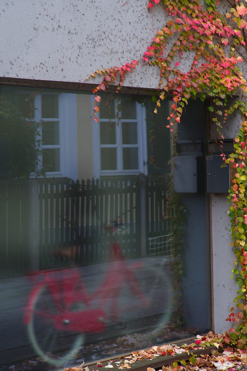 Autumn Colors, Lehel, Munich, Bicycle, Urban