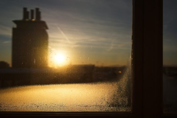 Anticipated Nostalgia XVIII - Dewdrops like Diamonds, Blumenstr., Munich, Backlight, Sunrise, The Seven, Urban