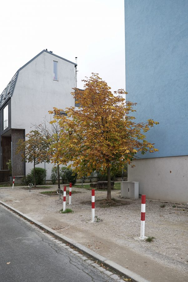 Soft Fall Colors, Burgerstr., Munich, Common Places, Urban