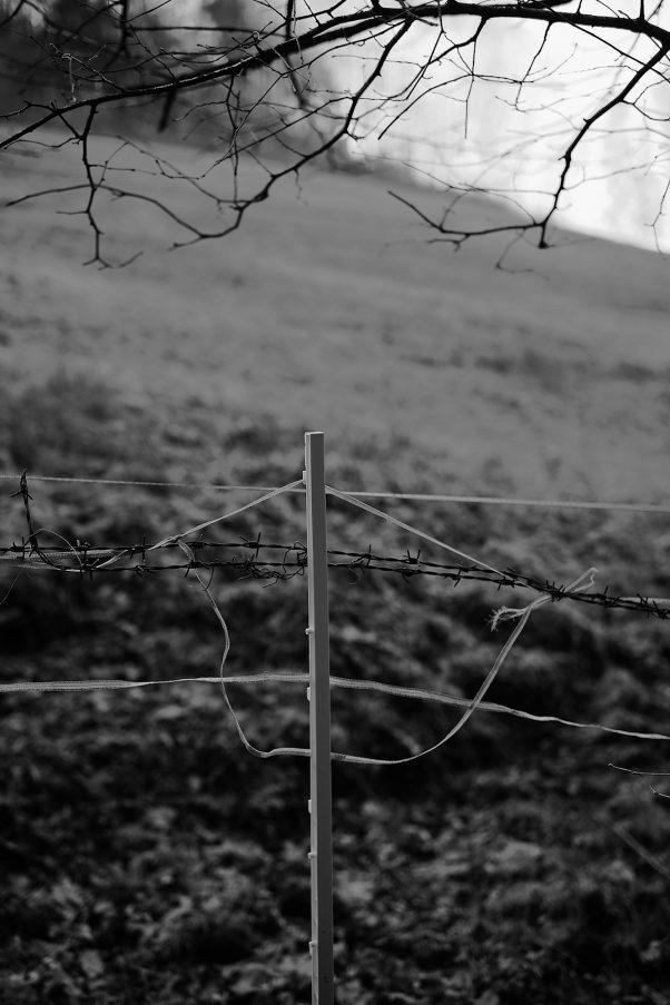 White Fence 2020, Kugelbachbauernweg, Bad Reichenhall, Black & White, Minor Landscape