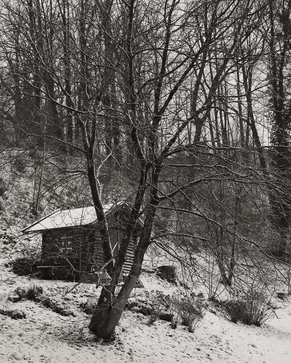 Late Winter Storm, Wisbachstr., Bad Reichenhall, Black & White, Garden, Urban. , , dahoam