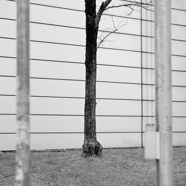 Three Pillars, Maxvorstadt, Munich, Black & White, Urban