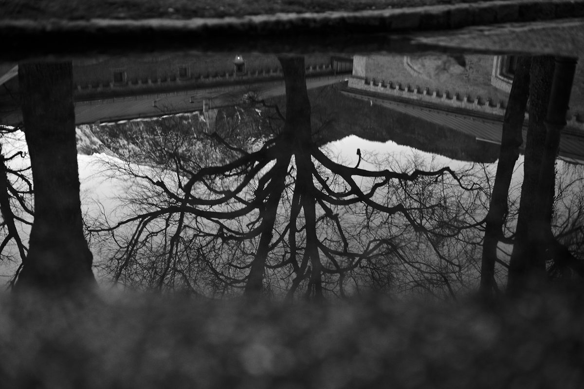 Upside Down, Alte Saline, Bad Reichenhall, Black & White, City Trees, Urban