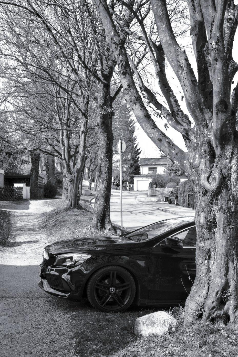 Car_on_the_Prowl.jpg